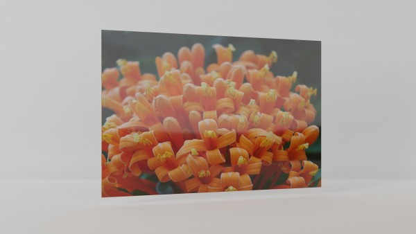 Infrarotheizung Glas Print